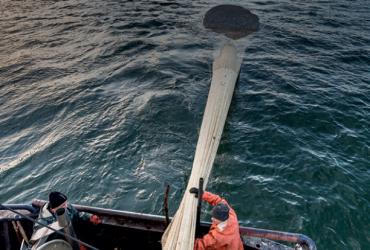 Elinkeinokalatalouden hallitusohjelmatavoitteet