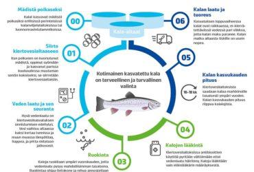 Kalan kiertovesikasvatusta kaukolämpölaitoksen yhteyteen ja osaksi laajaa kiertotalousjärjestelmää?