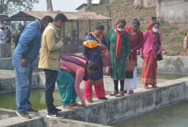 Naiset kestävän yrittäjyyden puolesta Nepalissa