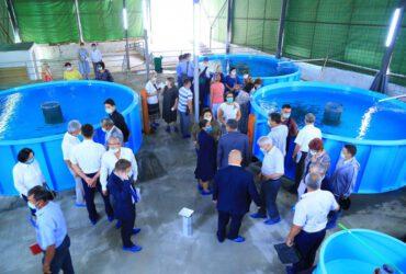 Kalataloussektorin koulutusyhteistyö kantaa hedelmää Kirgisiassa: mallikalanviljelylaitos avattu